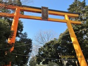 Resized  2014-01-04  Canon IXY 630  川越氷川神社‥  (6).jpg